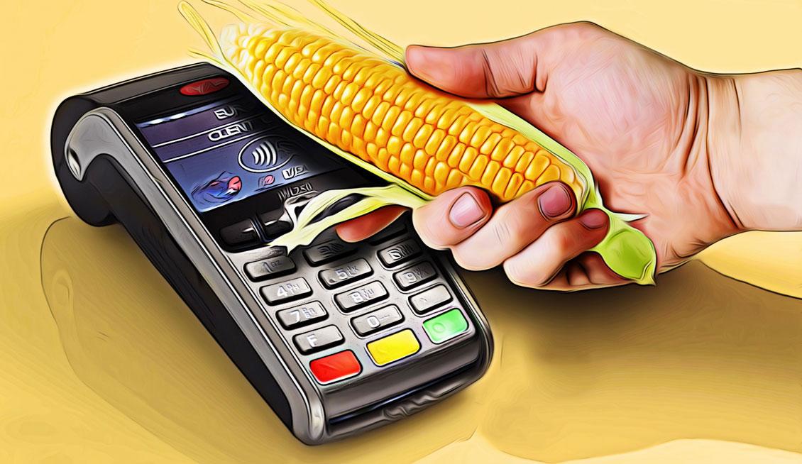 Как оформить срочный займ на карту «Кукуруза» без отказа